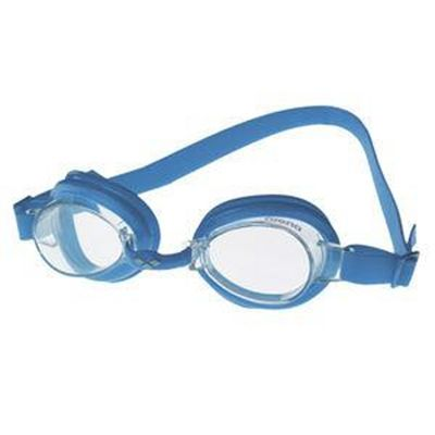 Arena Bubble Junior Goggles