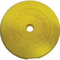 Golds Gym Coloured Vinyl Plate - 1kg