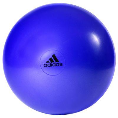 adidas 55cm Gym Ball-Purple