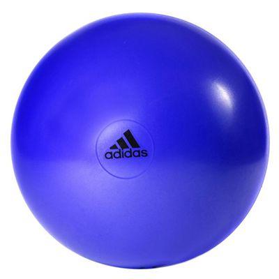 adidas 65cm Gym Ball Purple Logo View