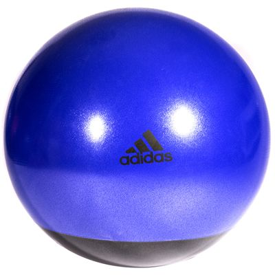 adidas 65cm Premium Gym Ball-Purple