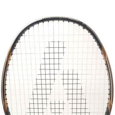 Ashaway Nano Dynamic 330 Badminton Racket 2018 - Zoom3