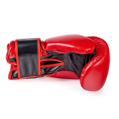 BBE Club FX Sparring Gloves - Above