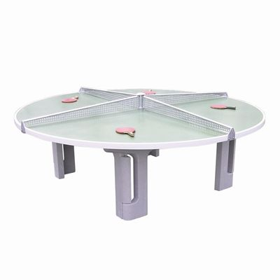 Butterfly R2000 Concrete Table Tennis Table