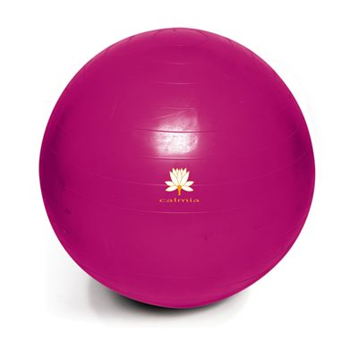Calmia 65cm Gym Ball