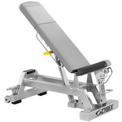 Cybex Big Iron Adjustable Dumbbell Bench