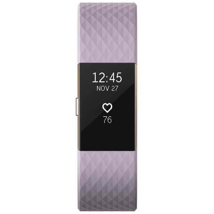 fitbit charge 2 special edition large fitness tracker with hr. Black Bedroom Furniture Sets. Home Design Ideas