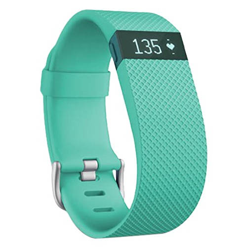 Fitbit Charge Heart Rate Monitor and Activity Tracker  Green Large