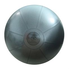 Fitness Mad 500Kg Studio Pro Swiss Ball 65cm