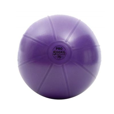 Fitness Mad 500Kg Swiss Ball 75cm