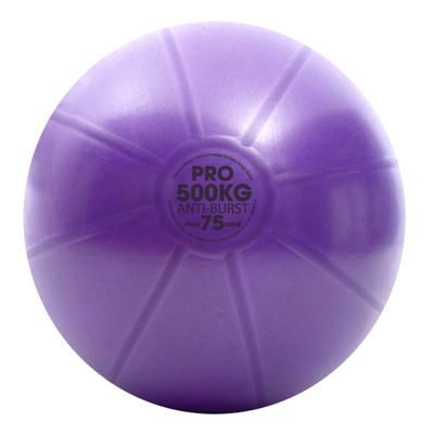 Fitness Mad Studio Pro 500Kg Swiss Ball and Pump - 75cm Ball