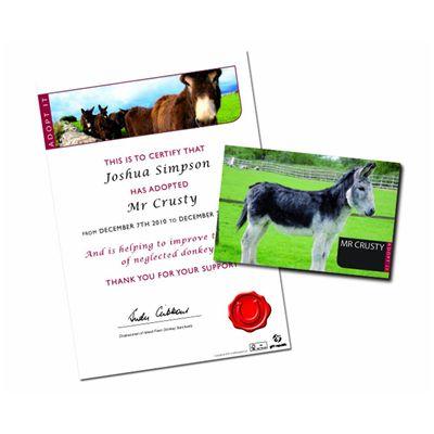 Gift Republic Adopt a Donkey Gift Box - Image 2