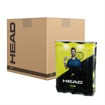 Head Team Tennis Balls - 6 Dozen