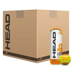 Head TIP Orange Mini Tennis Balls - 5 Dozen