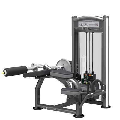 Impulse IT V Bench Leg Curl
