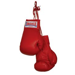 Lonsdale Autograph Boxing Gloves