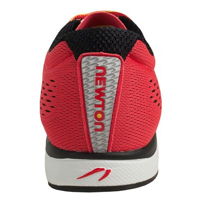 Newton Gravity IV Neutral Mens Running Shoes - Back View