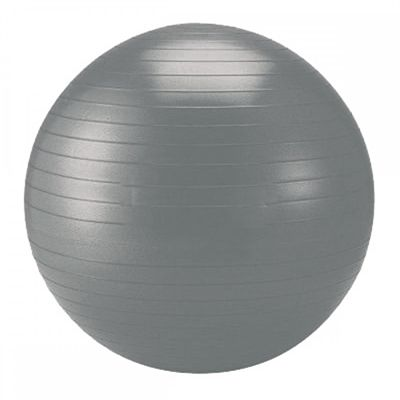 Schildkrot Fitness 65cm Gym Ball