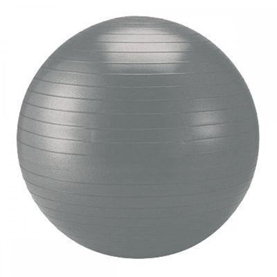 Schildkrot Fitness 65cm Gym Ball