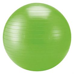 Schildkrot Fitness 75cm Gym Ball