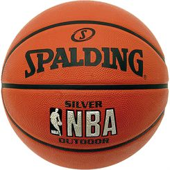 Spalding NBA Silver Outdoor Mini Basketball
