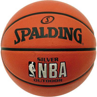 Spalding NBA Silver Outdoor Mini Basketball