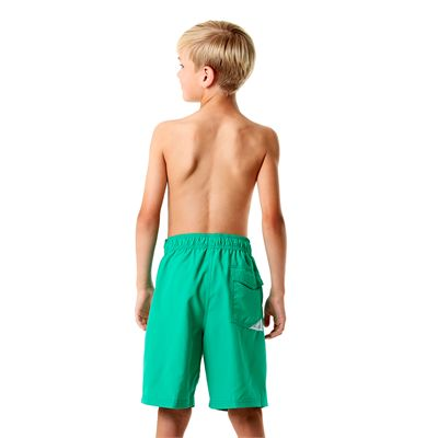 Speedo Graphic Logo 17 Inch Boys Watershorts-Green-Back View