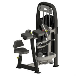Spirit Seated Bicep Curl and Tricep Extension