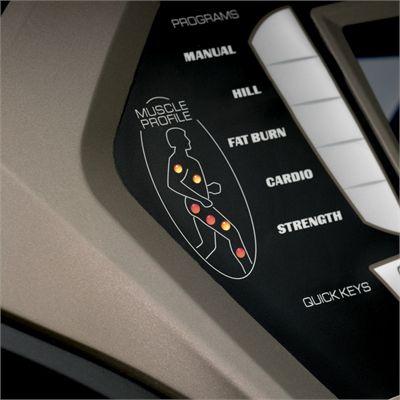 Spirit XT685 LC Treadmill Muscle Profile