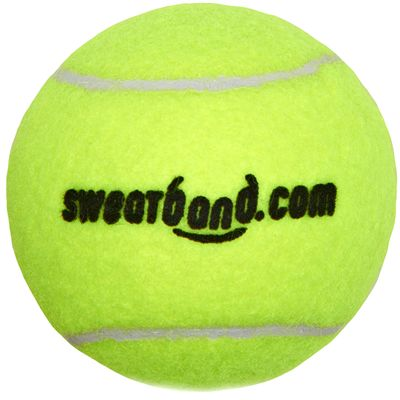 Sweatband.com Head Team Tennis Balls - Ball