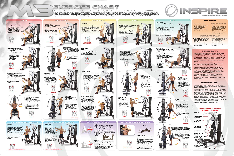 workout exercises workout routine universal gym