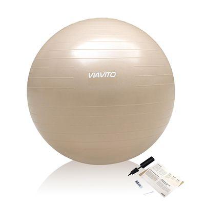 Viavito 500Kg Studio Antiburst 55cm Gym Ball - Champange