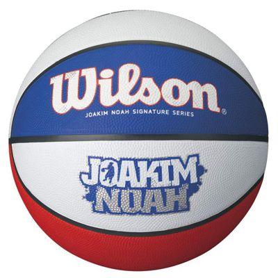 Wilson Joakim Noah Tricolor Basketball