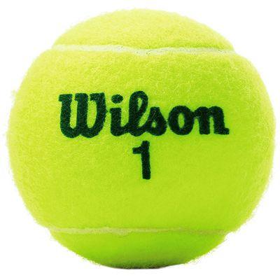Wilson Roland Garros Green Tennis Balls - Tube of 4 - Ball