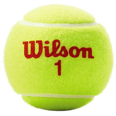 Wilson Roland Garros Orange Mini Tennis Balls - 5 Dozen - Ball