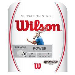 Wilson Sensation Strike Squash String Set